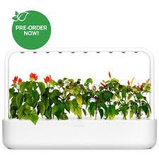 Wall Garden Kits by Indoor Herb Garden Kit And Refills Click U0026 Grow