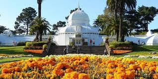 flowers san francisco conservatory of flowers events event venues in san francisco ca