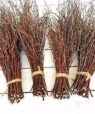 Birch Branches Home & Garden