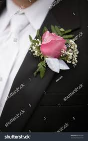 Rose Boutonniere Pink Rose Boutonniere Flower On Grooms Stock Photo 96432038