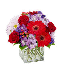 Red Flowers In A Vase Red U0026 Purple Brilliance At From You Flowers