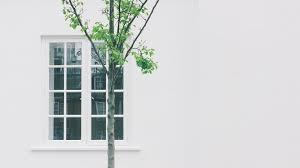 Punch Home Design Architectural Series 18 Windows 7 Washington D C Things To Do And Discounted Deals
