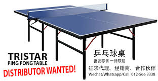 2 piece ping pong table no 1 malaysia ping pong table tristar
