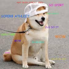 Original Doge Meme - such street cred doge know your meme