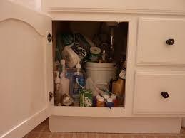 Under Bathroom Sink Storage by Under Bathroom Sink Storage Design Ideas U2013 Home Improvement 2017