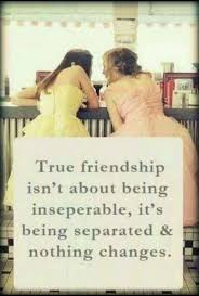 Myhotcomments Love Quotes by 63 Best Friendship Quotes Images On Pinterest Bff Quotes Best
