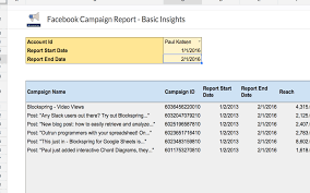 Basic Spreadsheet Facebook Campaign Report Basic Insights Spreadsheet Template