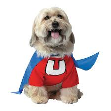 underdog costume for pets orientaltrading com superhero theme