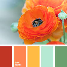 bright cheerful range of colors color riot improves mood and