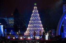 lighting of white house tree rainforest islands ferry