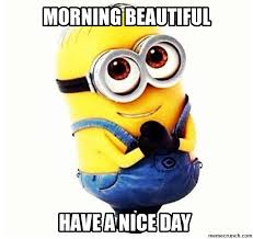 Good Morning Beautiful Meme - good morning beautiful meme quotes pinterest beautiful meme