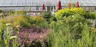 osmotherley garden club helmsley walled garden