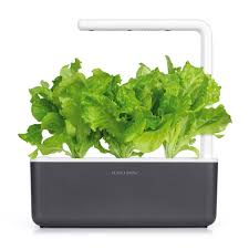 lettuce growth refill for indoor herb garden click u0026 grow
