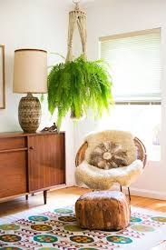 Indoor Trees For The Home by Beautiful Oversized Hanging Plants Apartment Therapy