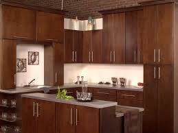 Mocha Kitchen Cabinets by Kitchen Cabinets Amazing Unique Kitchen Cabinet Doors Home