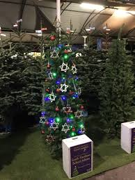 south farnham christmas tree decorating competition