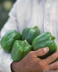 vegetable garden sun requirements vegetable growing guide martha stewart