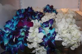Graduation Leis Different Types Of Graduation Leis W Blue And White Orchids Yelp