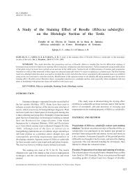 a study of the staining effect of roselle hibiscus sabdariffa on