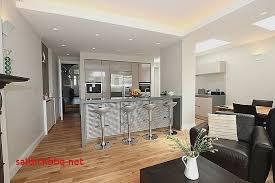 salon avec cuisine am駻icaine cuisine am駻icaine petit espace 100 images cuisine equipee