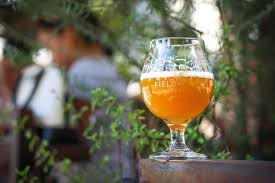 best thanksgiving beers the guide to the best places to drink beer this summer bay area