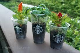 indoor planter like this item indoor planter pots melbourne