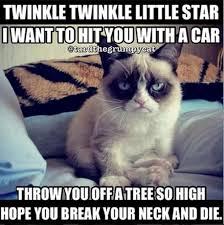 Tard The Grumpy Cat Meme - grumpy cat funny pictures w630