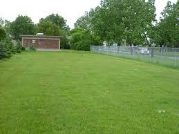 Football Field In Backyard Physical Activity Patterns In Urban Neighbourhood Parks Insights