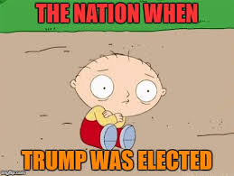 Family Guy Stewie Memes - yet another trump meme imgflip