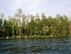 Latest Nh Lakes Region Listings by Our New Hampshire Listings Steve And Carol Bush Nh Lakes