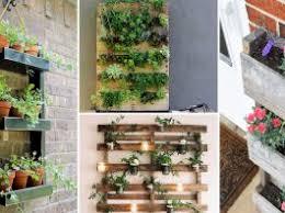 indoor garden ideas archives balcony garden web