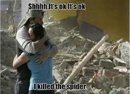 23 Funny Spider Memes Weneedfun - 23 funny spider memes weneedfun