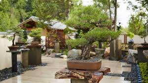 japanese garden the richard helen devos japanese garden meijer gardens