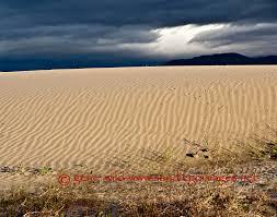 where is anza borrego anza borrego desert genewild
