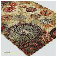 Area Rugs 5x7 Home Depot Area Rugs 5 7 Home Depot Teal Area Rugs Rug Home Depot Adca22 Org
