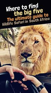 94 best africa images on pinterest africa travel travel tips