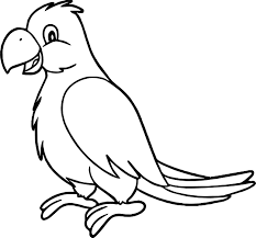 sweet parrot coloring page wecoloringpage