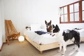 Diy Bed Frame A Diy Bed Frame Room Tour Wildlandia