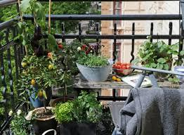 garten balkon coole ideen für balkon pflanzen einen garten auf balkon