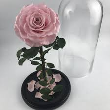 glass rose stem glass rose stem suppliers and manufacturers at
