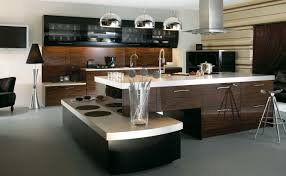 Revit Kitchen Cabinets Modern Galley Kitchen Design Blue Painted Cabinet Brown Teak Wood