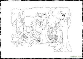 free coloring page of the rainforest rainforest coloring pages rain forest coloring pages butterfly