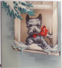 here u0027s trouble in the window scottish terrier christmas