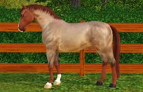 sims 3 australian shepherd template es pony breed association