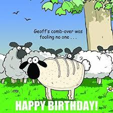 twizler funny birthday card with sheep for man happy birthday
