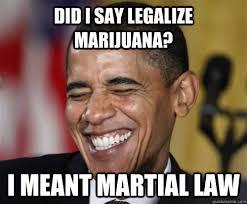 Legalize Weed Meme - did i say legalize marijuana i meant martial law scumbag obama