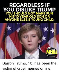 Making Memes Online - regardless if you dislike trump you should not make fun his 10