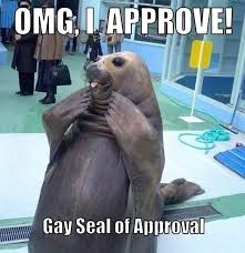 Seal Gay Meme - gay seal of approval lgbt pinterest funny things