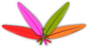 turkey feather clipart colored feather u2013 gclipart com