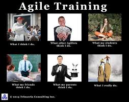 Agile Meme - scrum comics on twitter rt danielgullo funny agile meme here s
